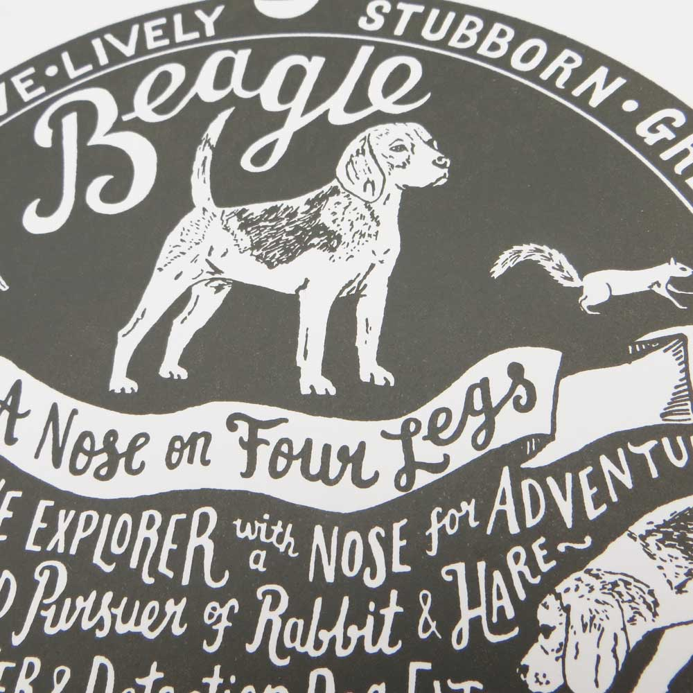 Beagle Dog Art prints - Hand lettering & Illustration by Debbie Kendall