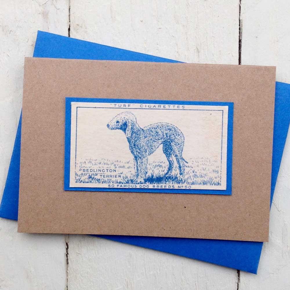 Bedlington Terrier Vintage Greeting Card - The Enlightened Hound