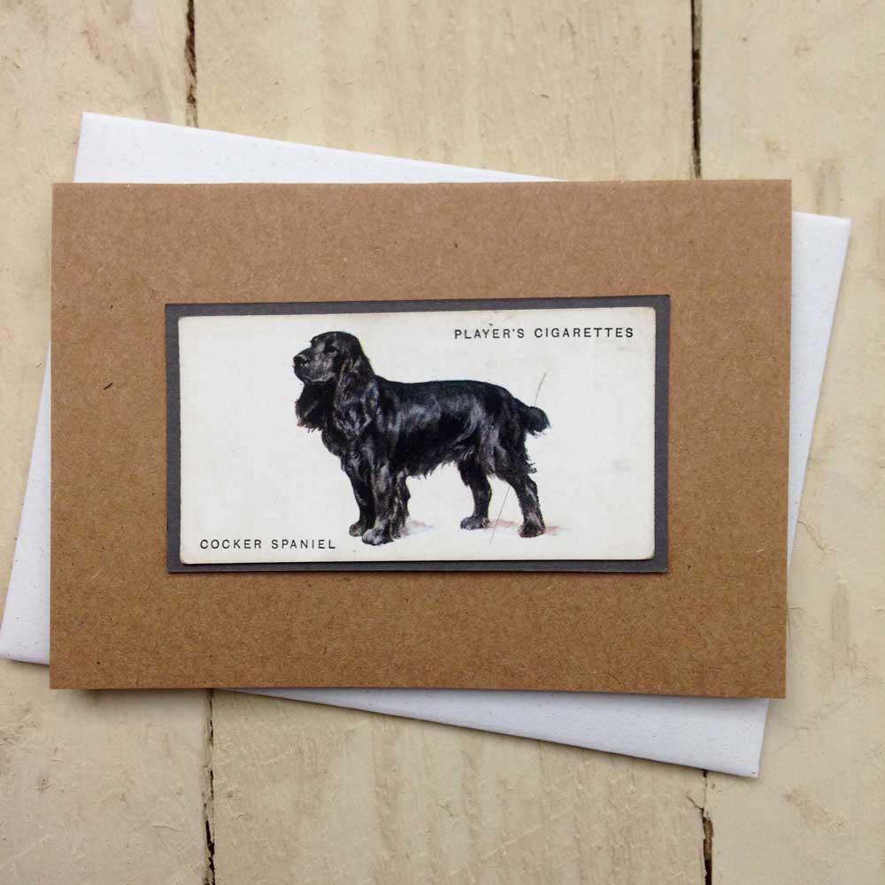 Black Cocker Spaniel card - the Enlightened Hound