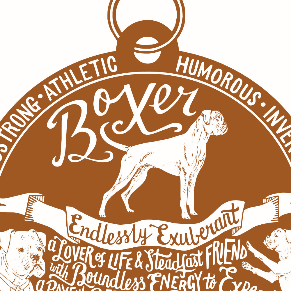 Boxer Dog Art Print | The Enlightened Hound