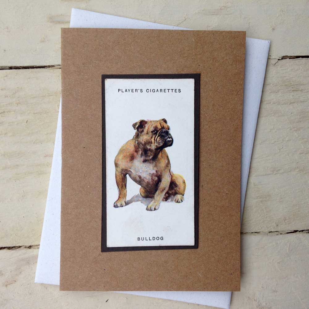 Bulldog Vintage Greeting Card - The Enlightened Hound
