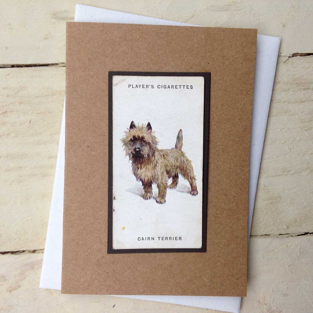 Cairn Terrier card - The Enlightened Hound
