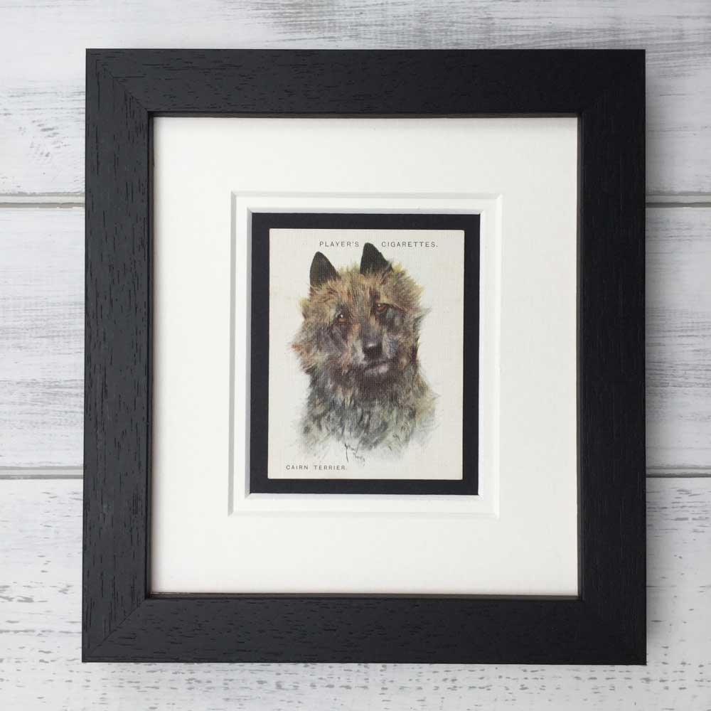 Vintage Gifts for Cairn Terrier Lovers - The Enlightened Hound