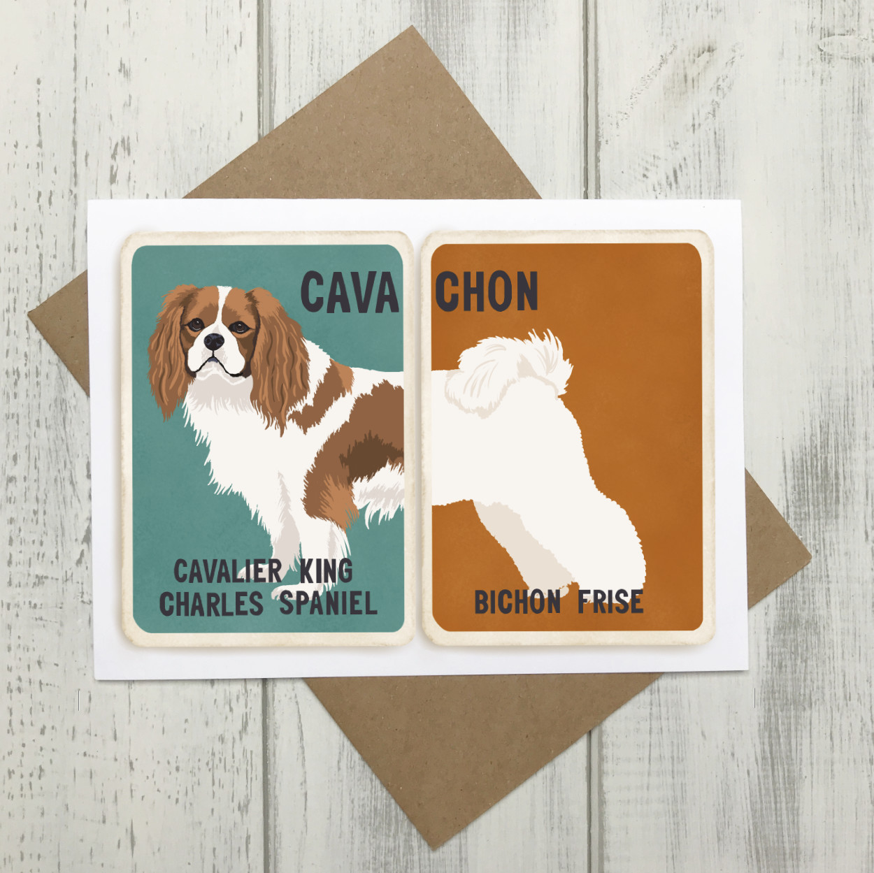 Cavachon Cross Breed card - Cavalier King Charles Bichon Frise
