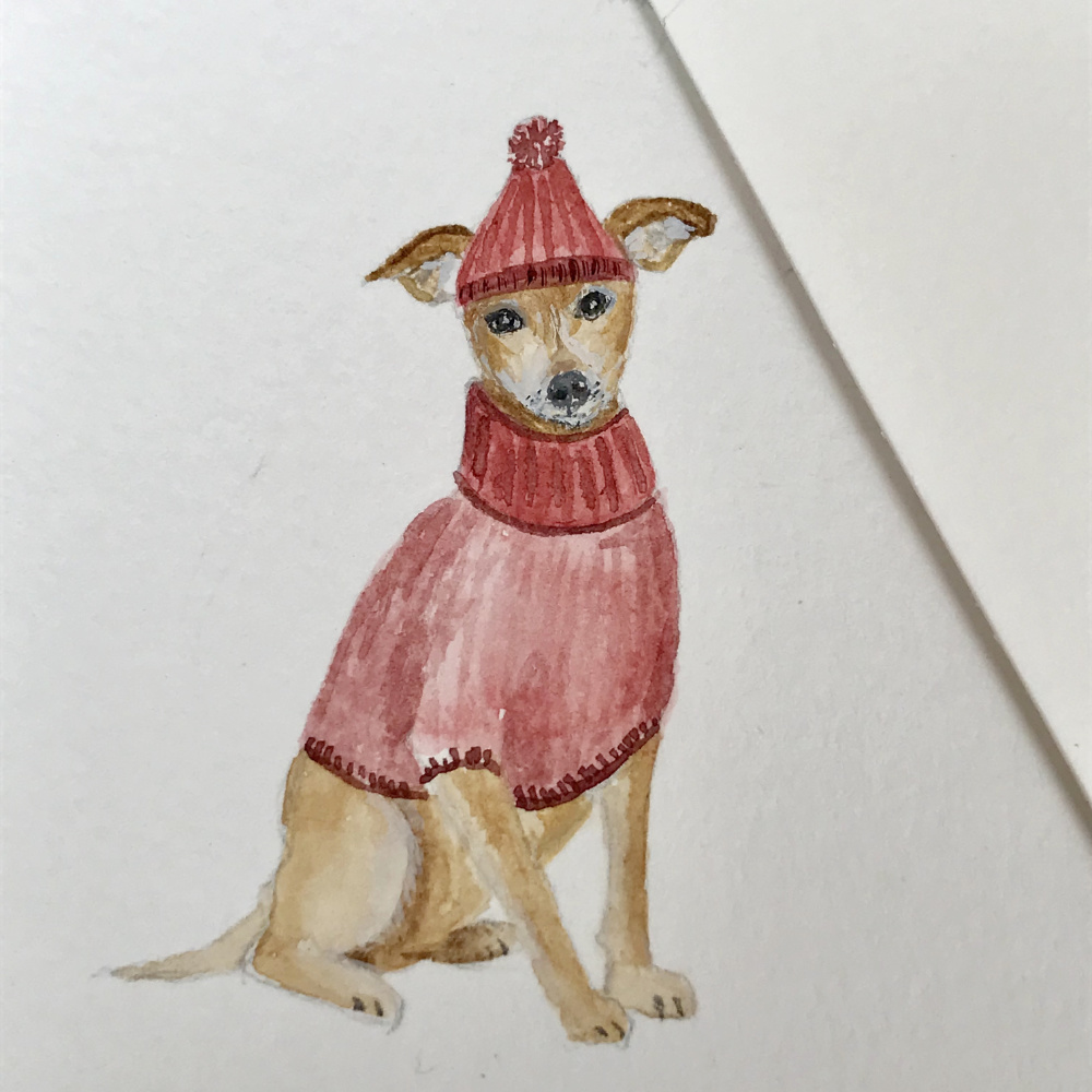 Chihuahua in sweater watercolour | The Enlightened Hound