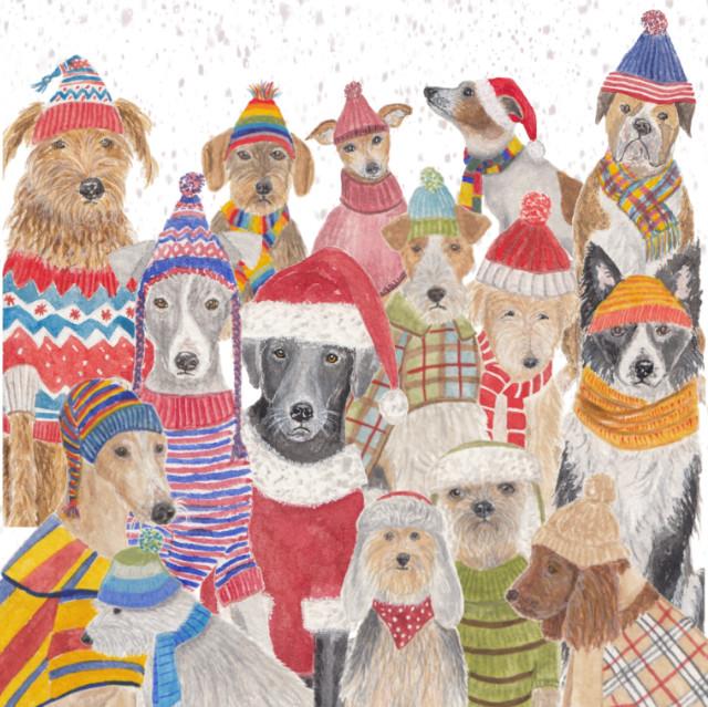 Dog Christmas card illustration | The Enlightened Hound