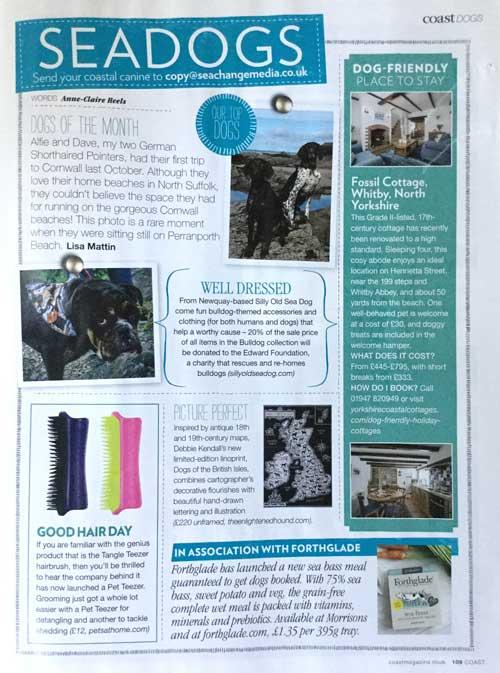 Coast Magazine Feature | The Enlightened Hound