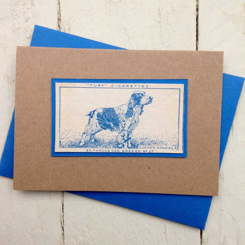 Cocker Spaniel Greeting Card- The Enlightened Hound