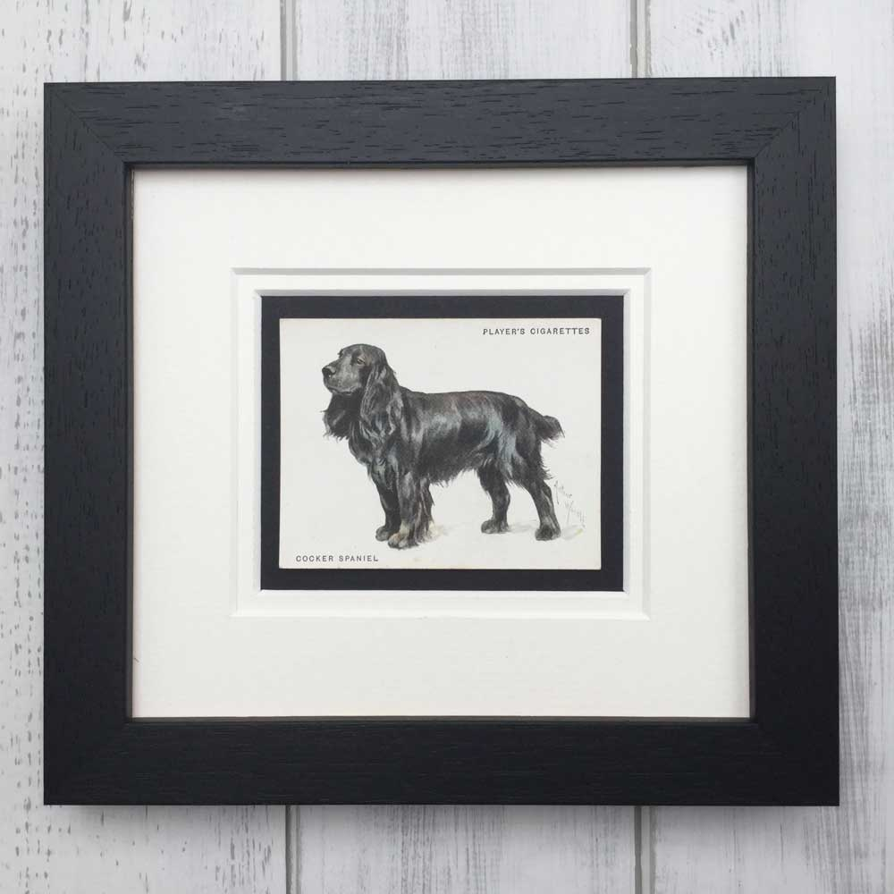 Vintage Gifts for Cocker Spaniel Lovers - The Enlightened Hound