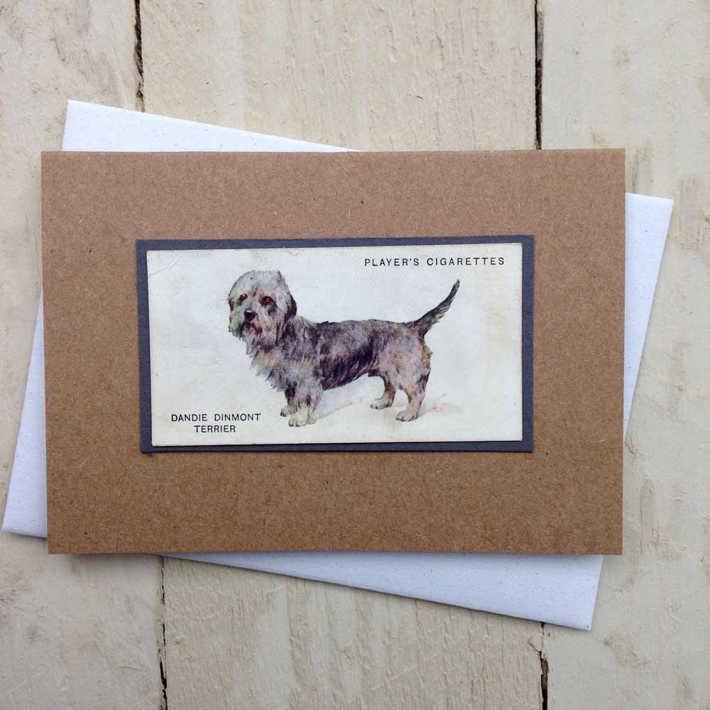Dandie Dinmont Terrier card - The Enlightened Hound