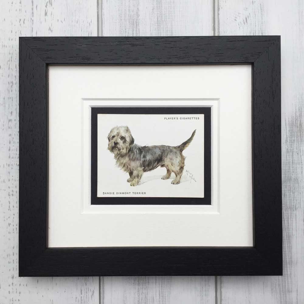 Vintage Gifts for Dandie Dinmont Terrier Lovers - The Enlightened Hound