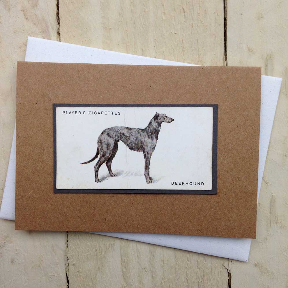 Deerhound Vintage Greeting Card - The Enlightened Hound