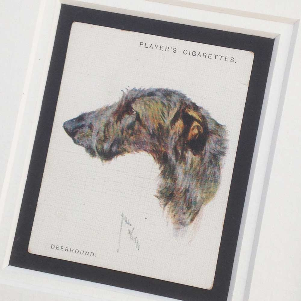 Deerhound Vintage Gifts - The Enlightened Hound
