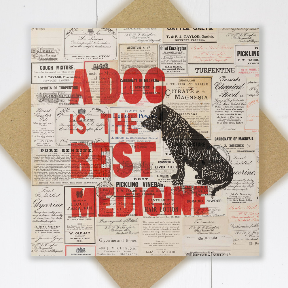 A Dog is the Best Medicine Card | The Enlightened Hound