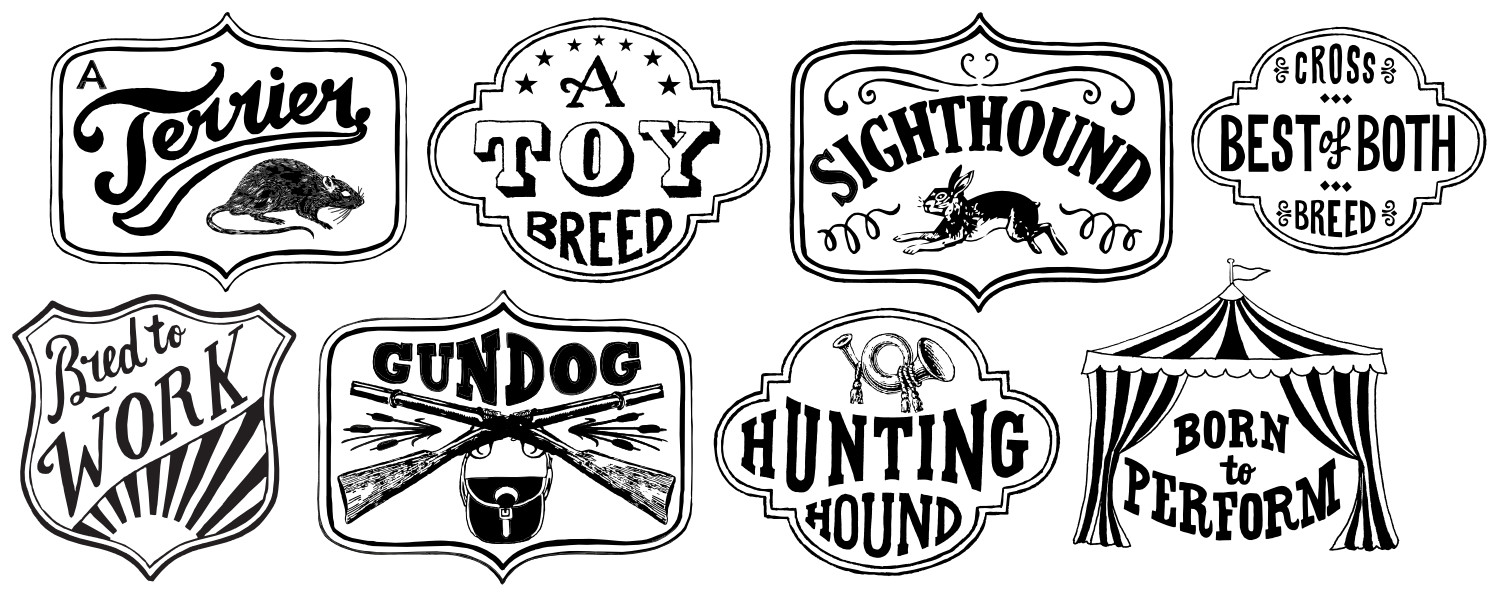 Hand Lettered Dog Breed Class Groups | The Enlightened Hound