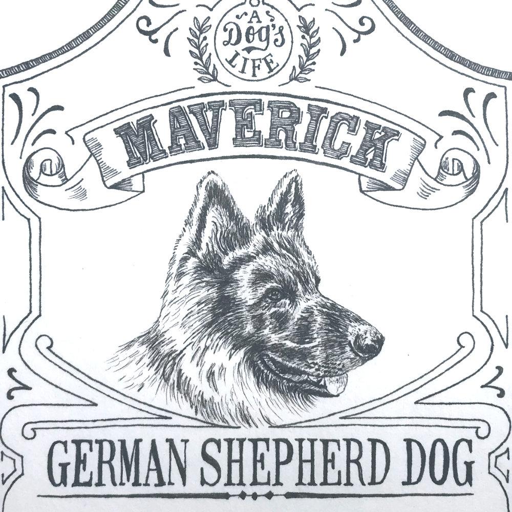 Dog Illustration Pet Portrait Pen Ink |The Enlightened Hound