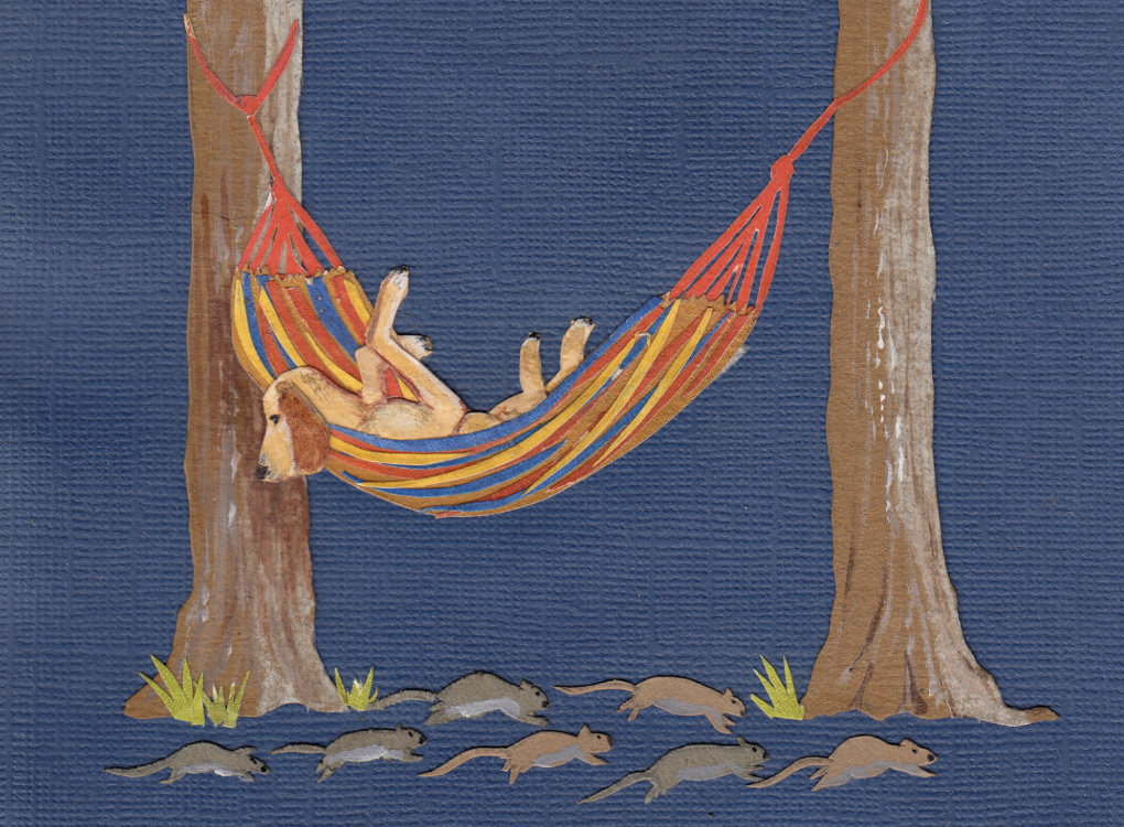 Dog in hammock illustration | The Enlightened Hound