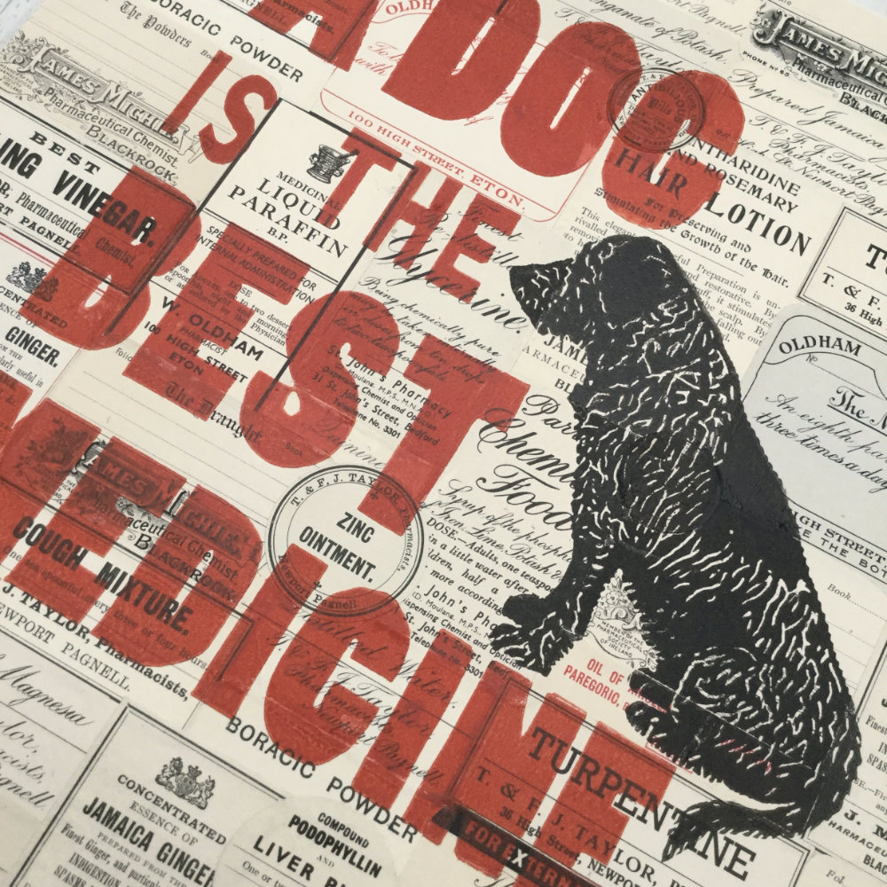 Gift for dog lover vet doctor |The Enlightened Hound