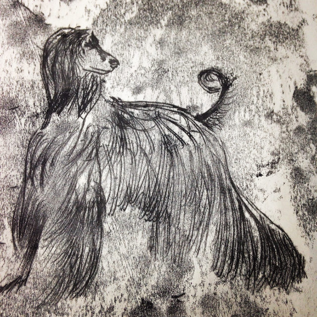 Afghan Hound Illustration Monoprint | The Enlightened Hound