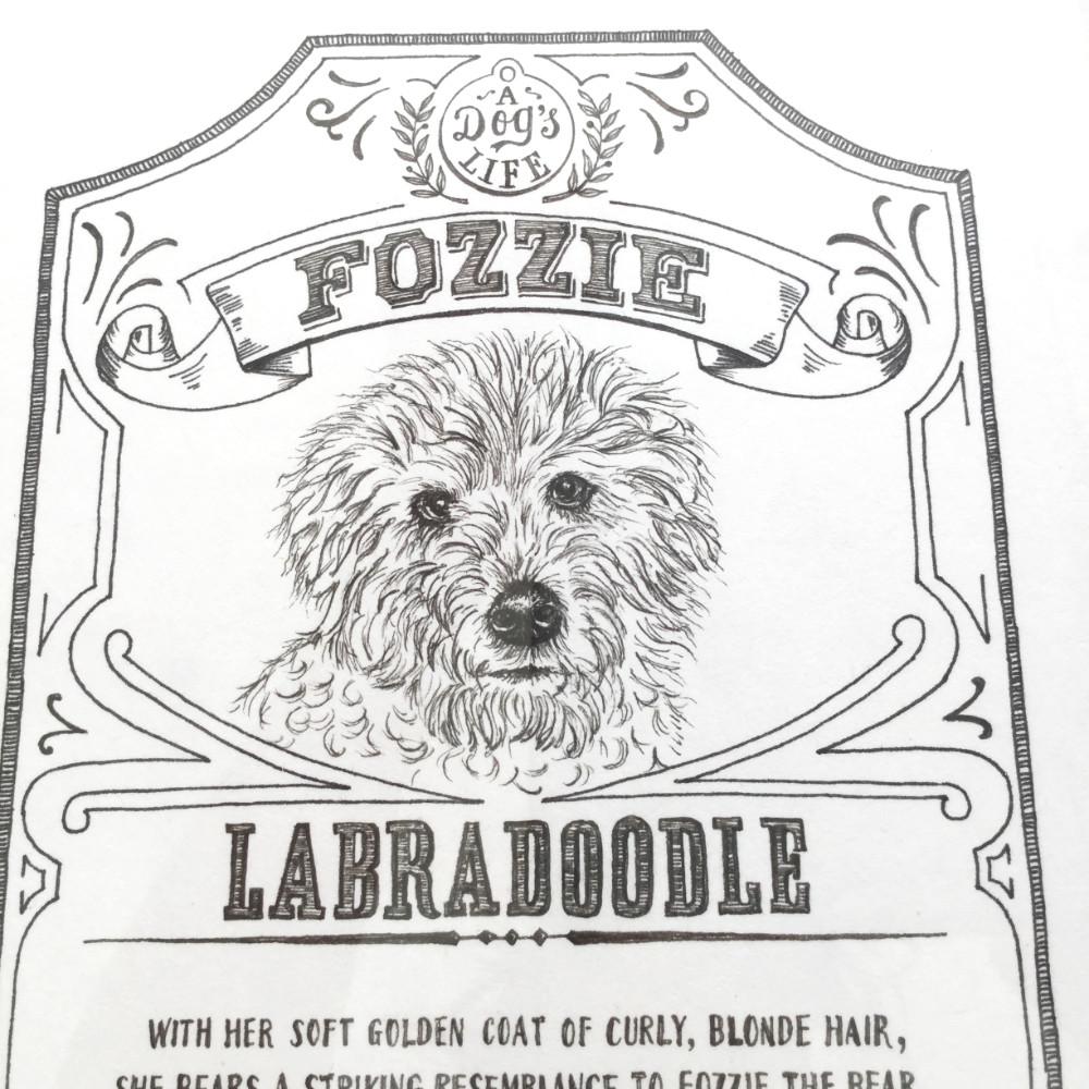 Dog Illustration Labradoodle Portrait Pen Ink |The Enlightened Hound
