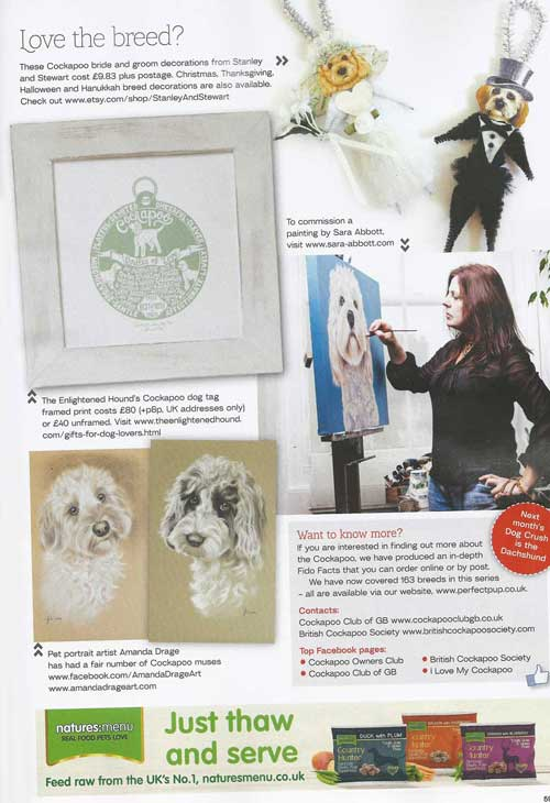 The Enlightened Hound in Dogs Today magazine