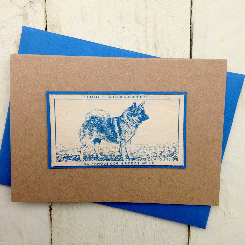 Elkhound greeting card - The Enlightened Hound