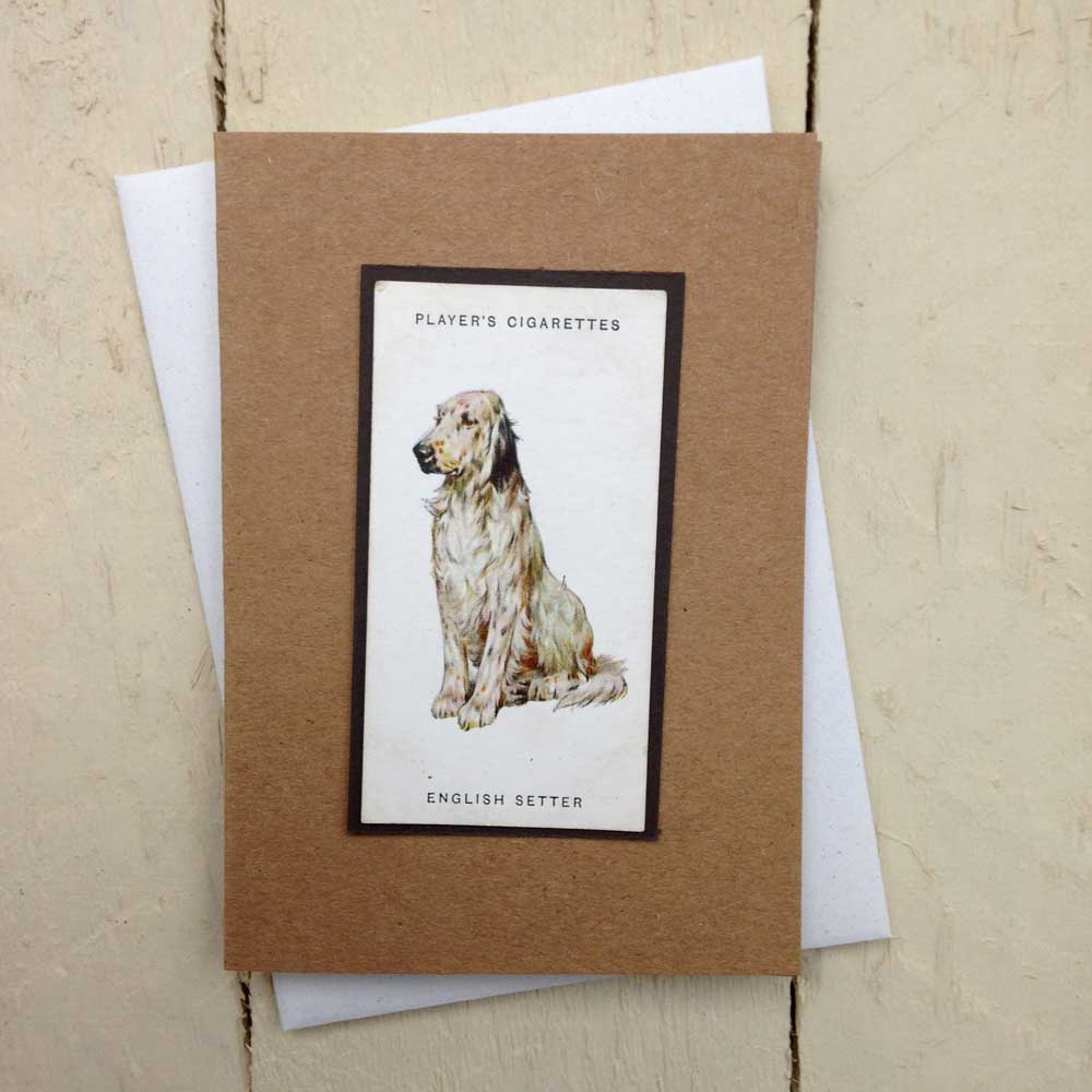 English Setter greeting card | The Enlightened Hound