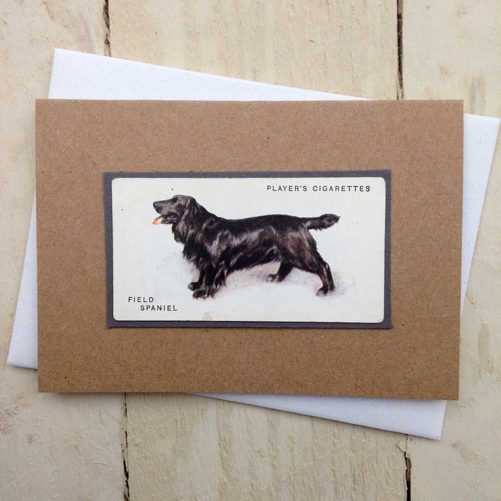 Field Spaniel card - The Enlightened Hound