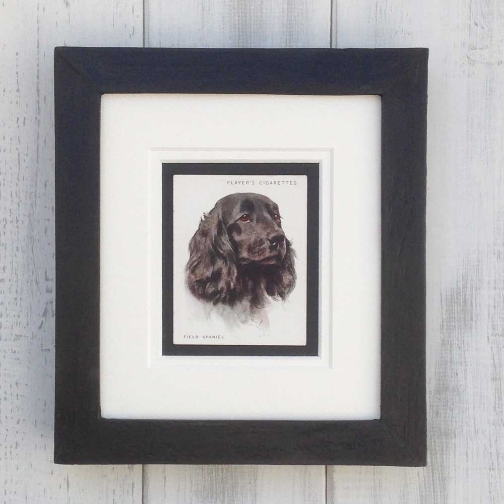 Vintage Gifts for Field Spaniel Lovers - The Enlightened Hound