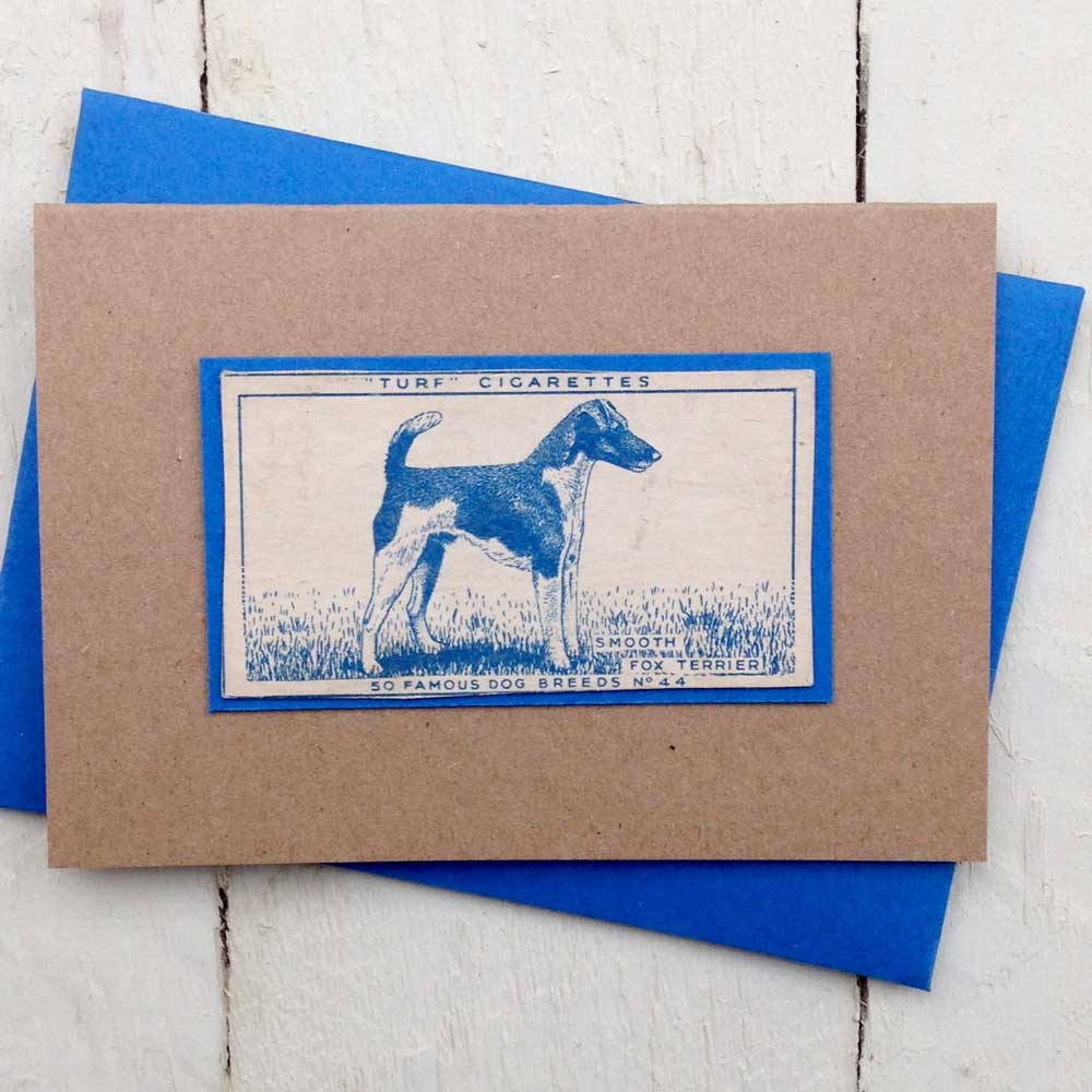 Smooth Fox Terrier Card | The Enlightened Hound