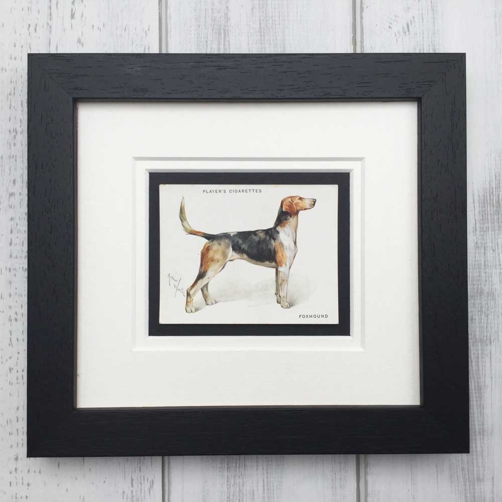 Vintage Gifts for Foxhound Lovers - The Enlightened Hound