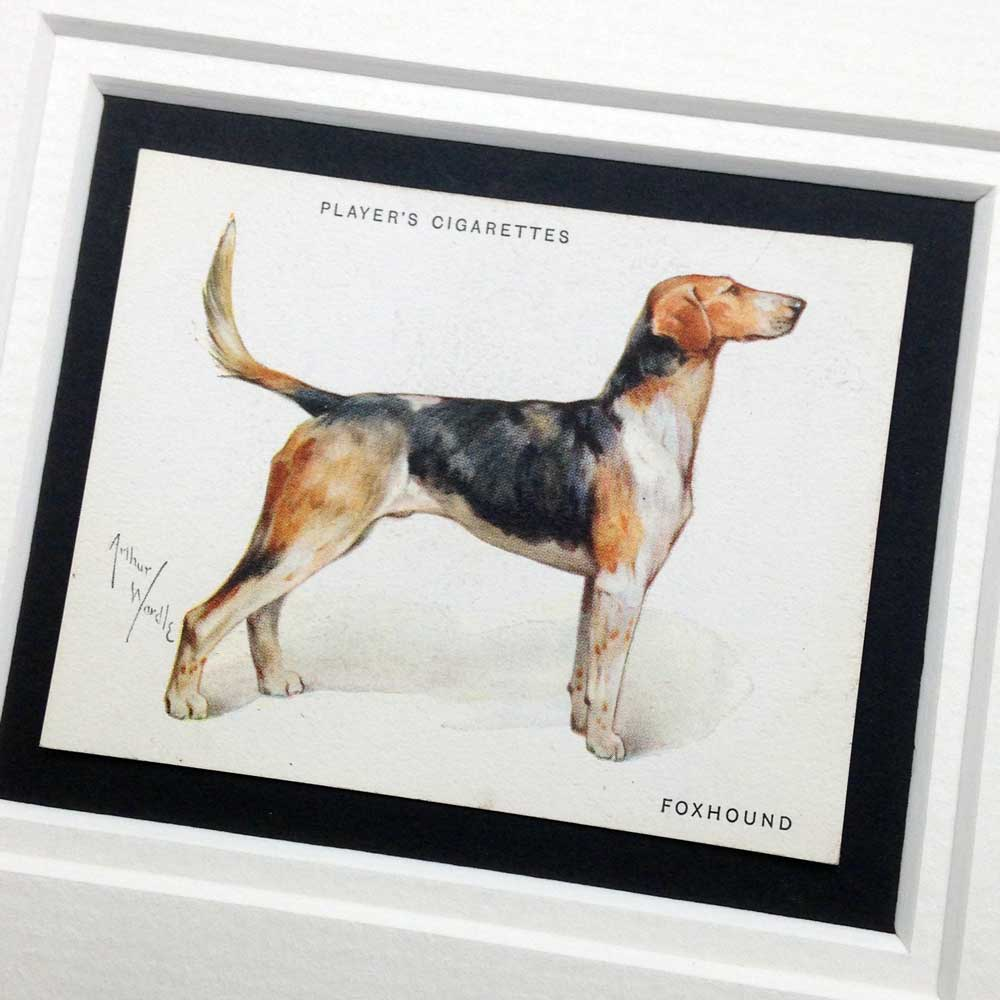 Foxhound Vintage Gifts - The Enlightened Hound