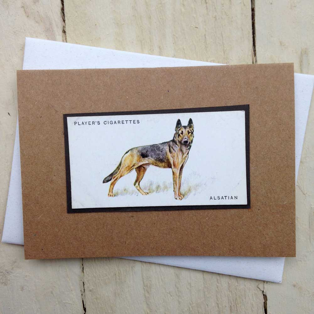 German Shepherd vintage greeting card | The Enlightened Hound
