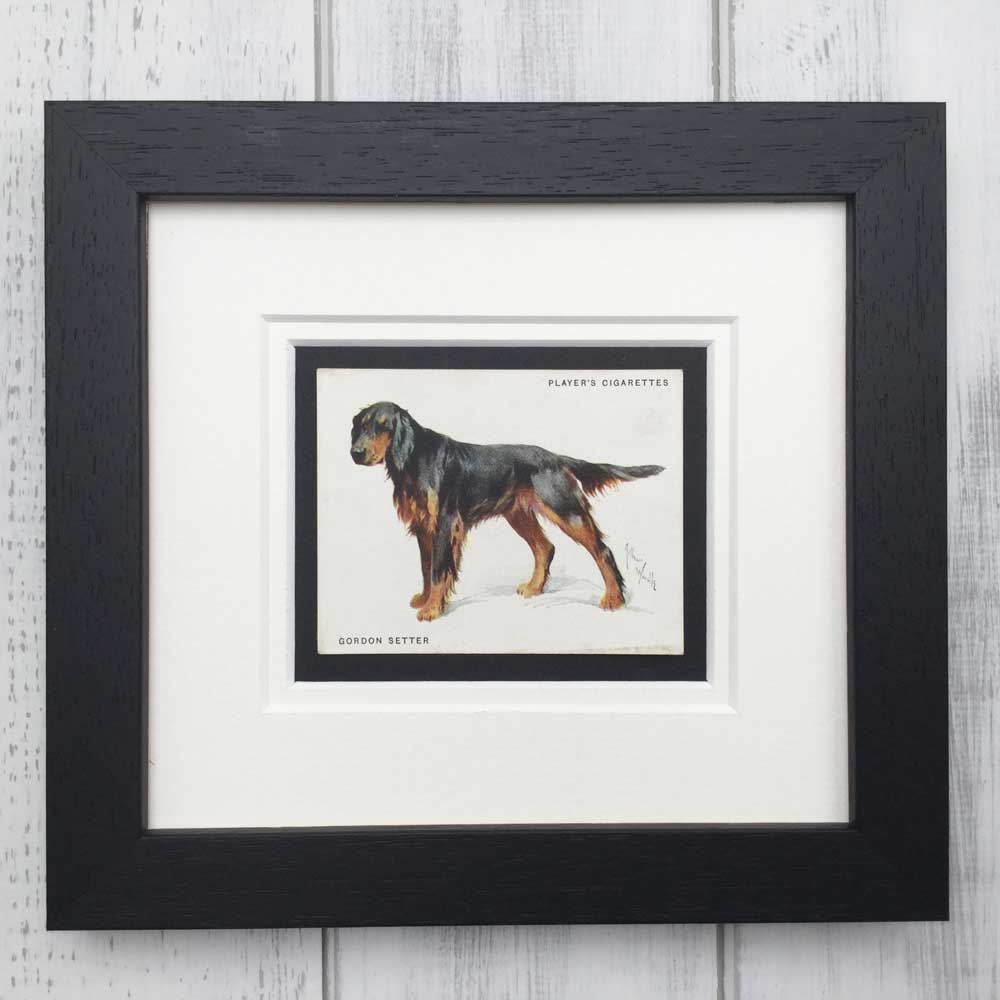 Vintage Gifts for Gordon Setter Lovers - The Enlightened Hound