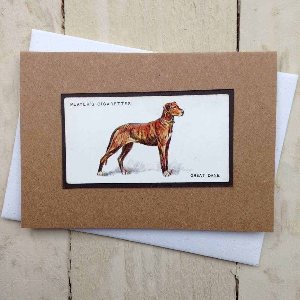 Great Dane Card | The Enlightened Hound