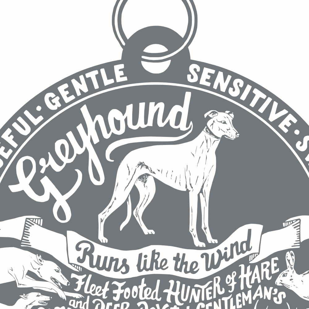 Greyhound Art Print | The Enlightened Hound
