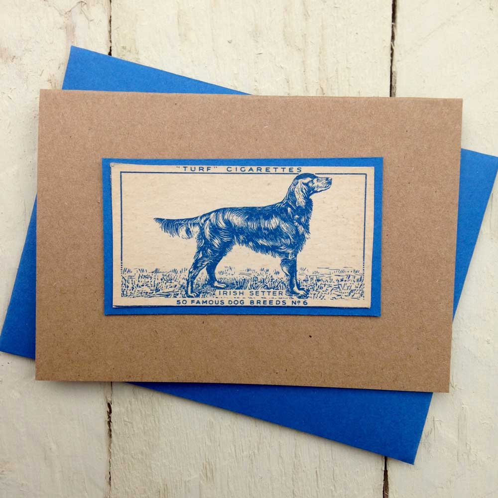 Irish Setter Vintage Greeting Card - The Enlightened Hound