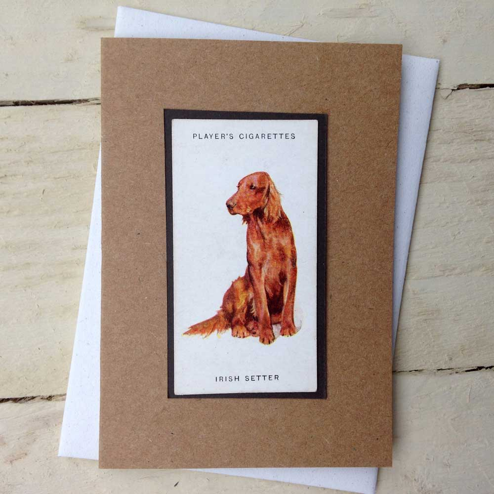 Irish Setter Greeting Card - The Enlightened Hound