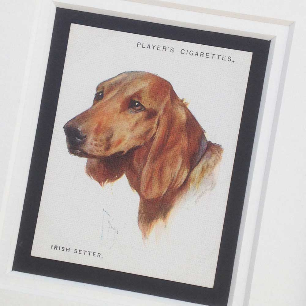 Irish Red Setter Gifts - The Enlightened Hound