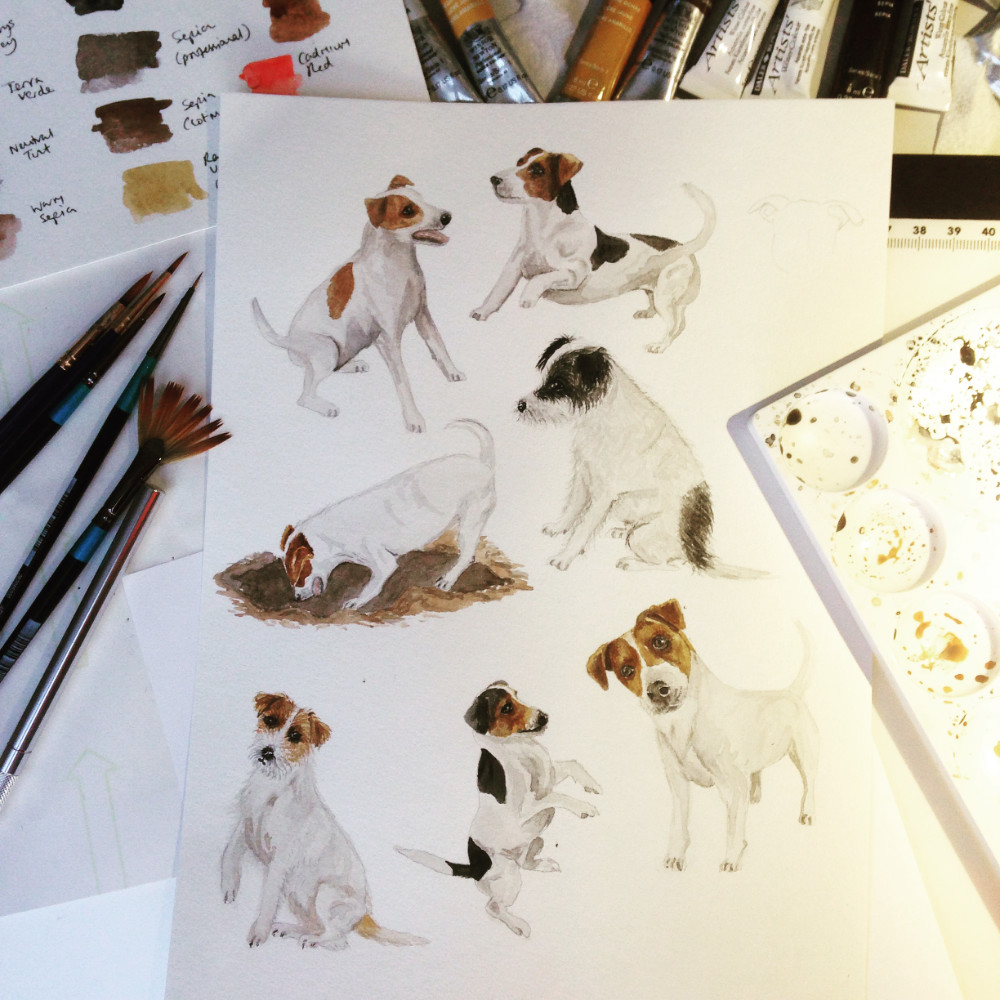 Jack Russell Watercolour Art Illustration | The Enlightened Hound