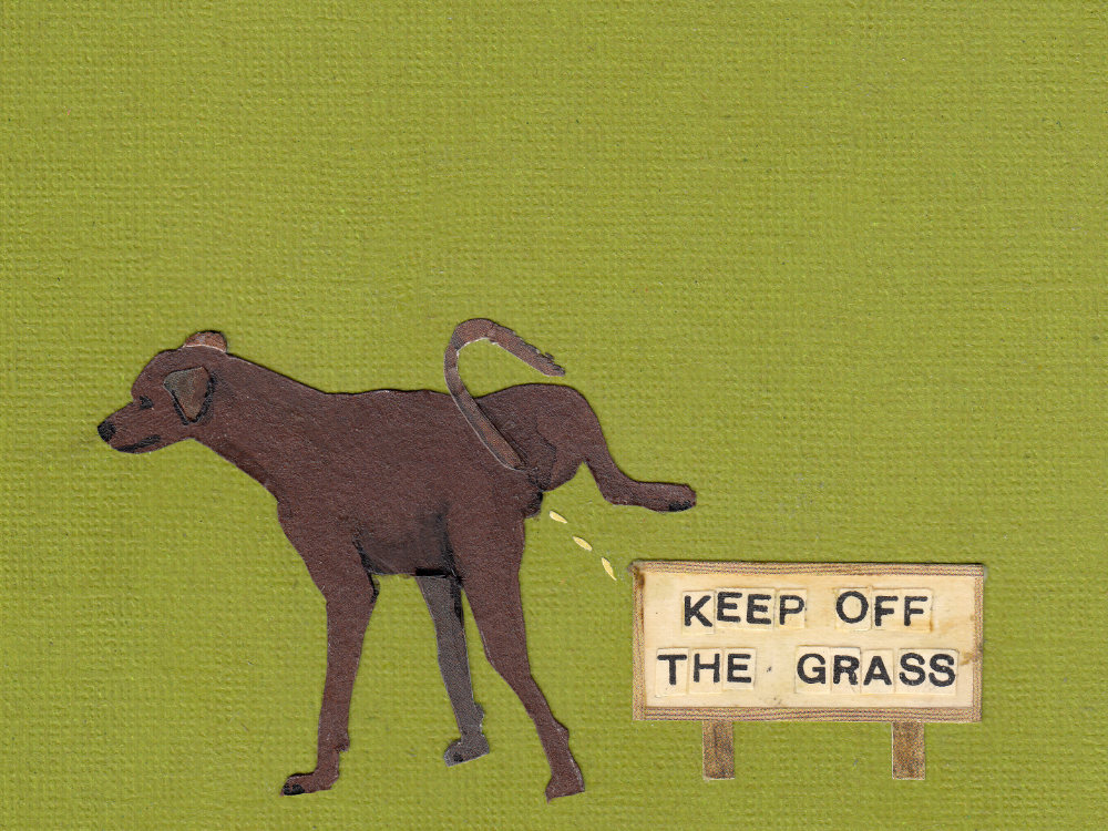 Keep off the grass illustration | The Enlightened Hound
