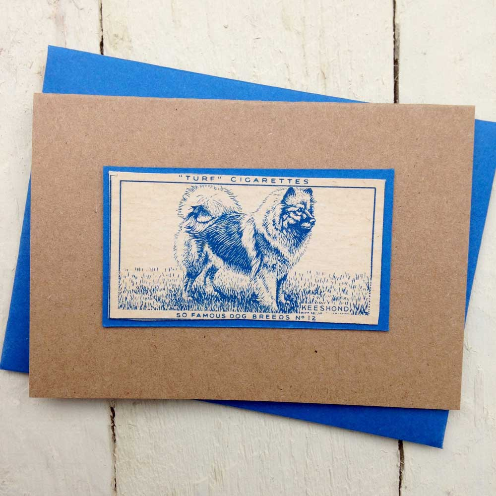 Keeshond greeting card - The Enlightened Hound