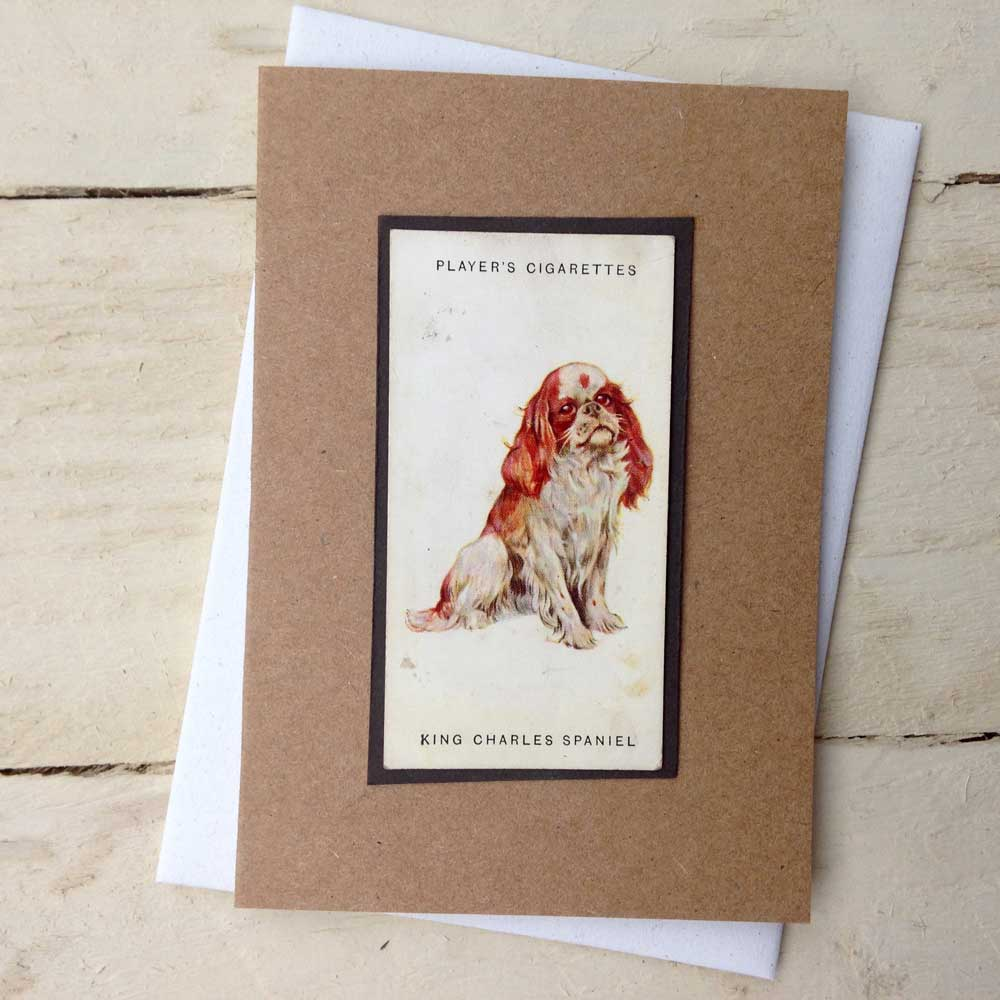 King Charles Spaniel greeting card | The Enlightened Hound