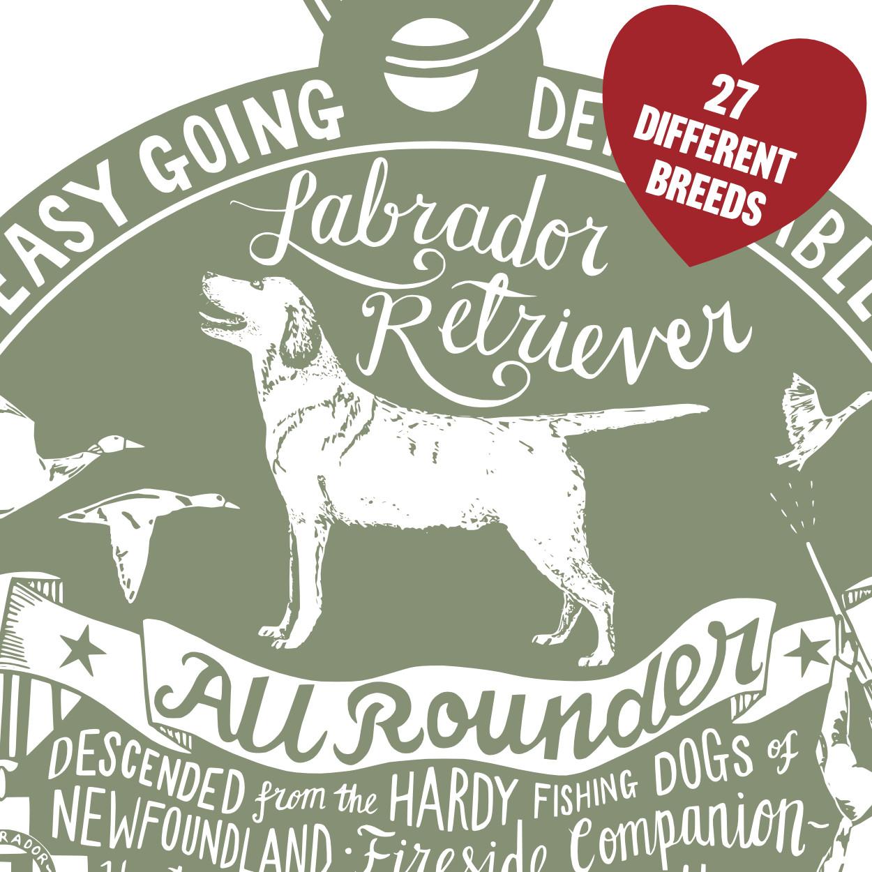 Labrador Art Print | The Enlightened Hound