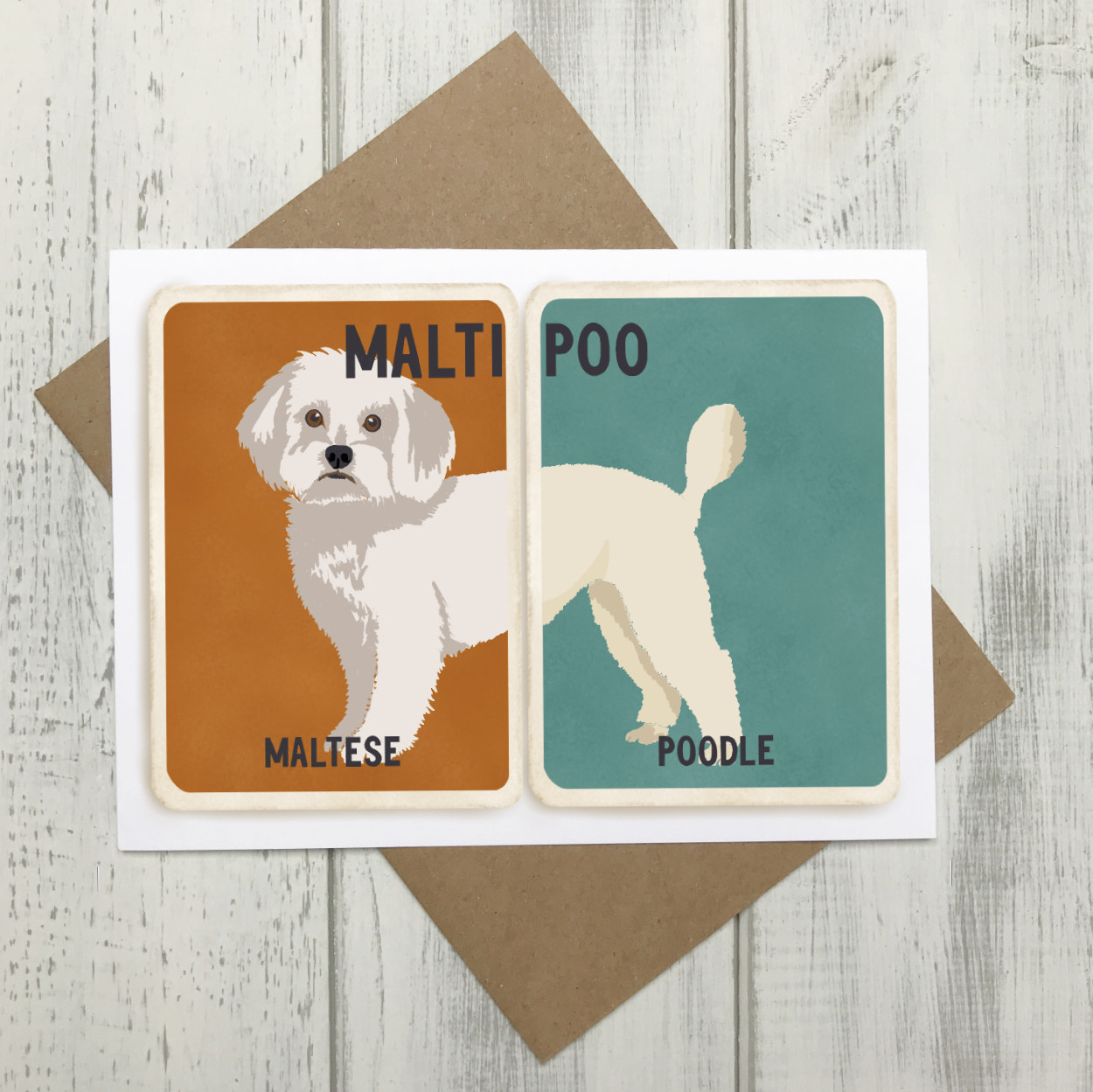 Maltipoo Cross Breed Card | Maltese Poodle Cross