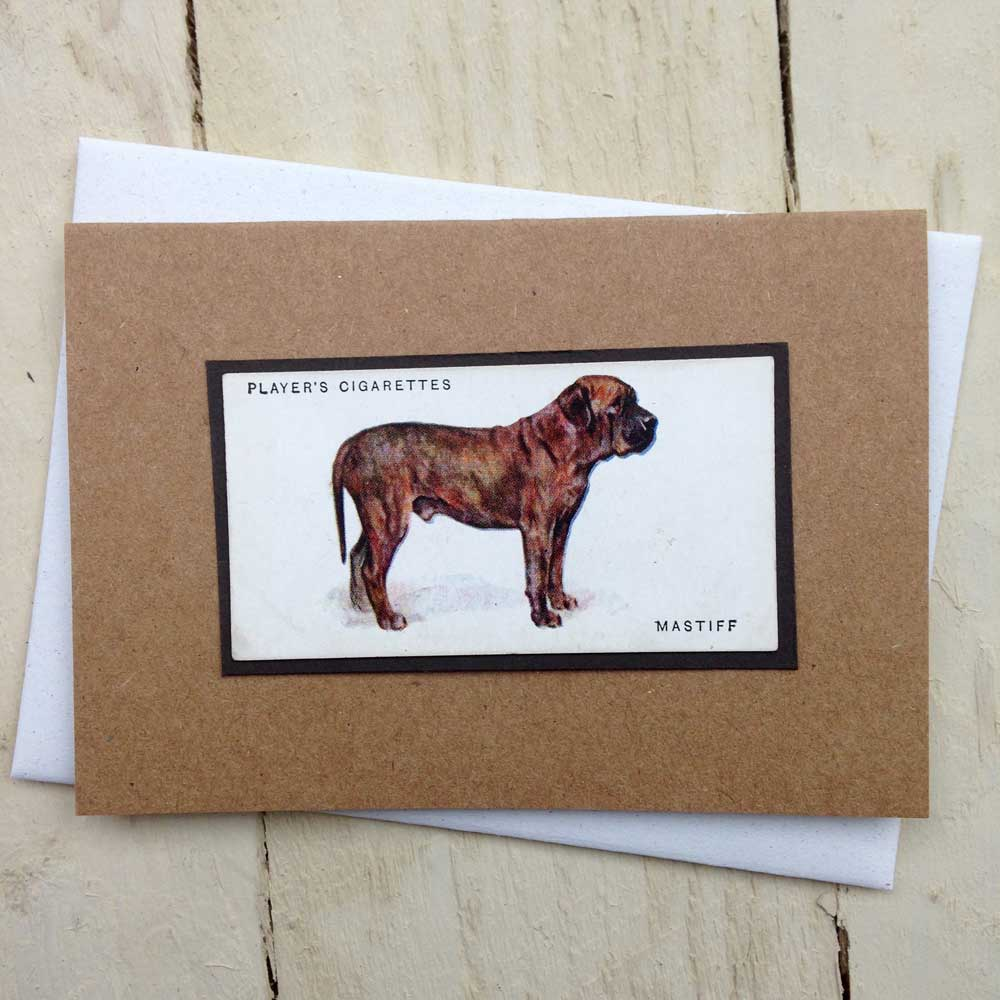 Mastiff greeting card | The Enlightened Hound
