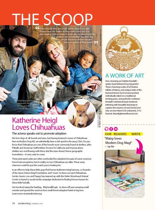 Modern Dog Magazine Feature | The Enlightened Hound