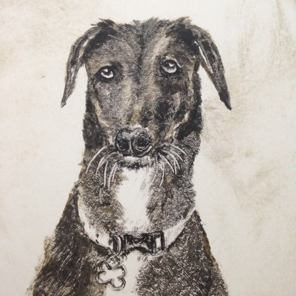 Mongrel Monoprint Dog  |The Enlightened Hound