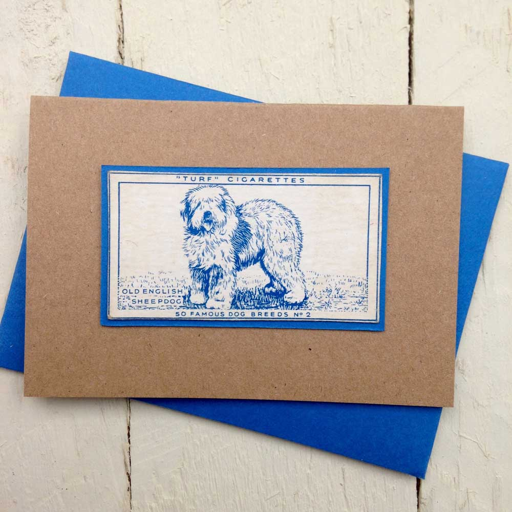 Old English Sheepdog greeting card | The Enlightened Hound
