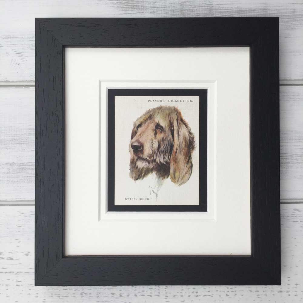 Vintage Gifts for Otterhound Lovers - The Enlightened Hound